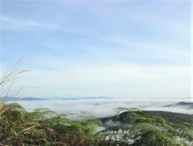 Bukit Senaling Hike