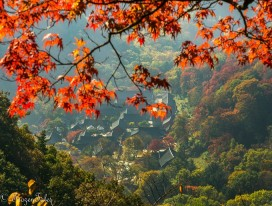 An Autumn's Hike in South Korea