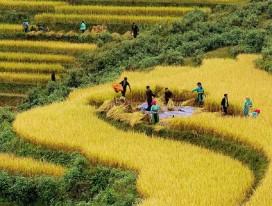 Spectacular Northeast Vietnam