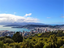 Wild Wellington Tour