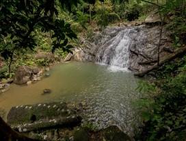 Gunung Pulai Hike