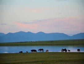 Explore Mountains of Kygryzstan on 2 Wheels