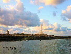 Jeju Round Island Cycling (GUARANTEED)