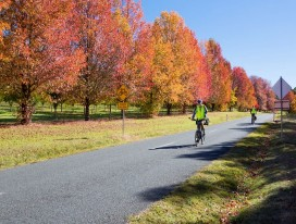 Cycling in Australia's Autumn Colours