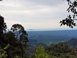 Bukit Banang Hike