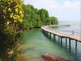 Pulau Ubin & Chek Jawa