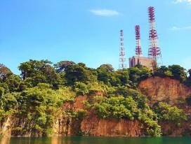 Pristine Tropical Rainforest in Bukit Timah