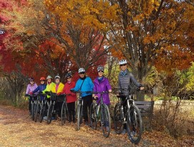 (Pre-Register) Cycling in South Korea Autumn Colours