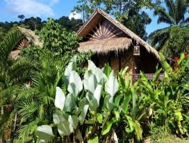 Krabi - Wareerak Hot Spring Retreat