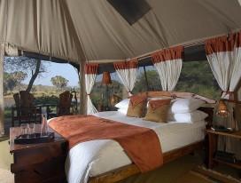 Kenya Safari Escapades