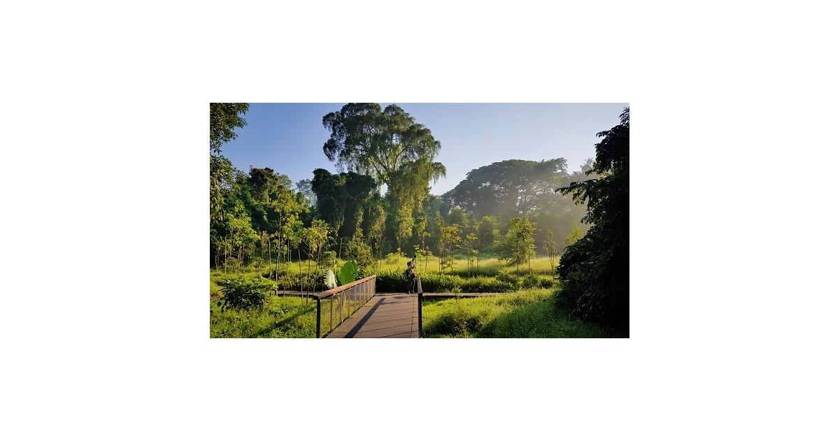 A Walk in Windsor Park