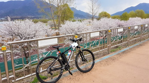 Planning A Cycling Trip To South Korea?